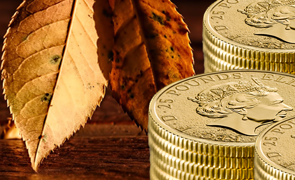 Gold Coins and Autumn Leaves