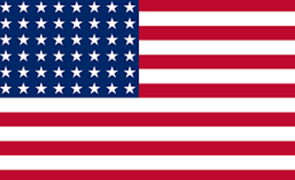 USA Flag: Does Washington have gold's future in its hands?