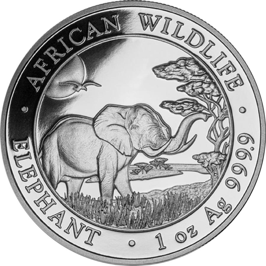 2019 Somalian Elephant 1oz Silver Coin - Full Tube of 20 Coins (Image 2)
