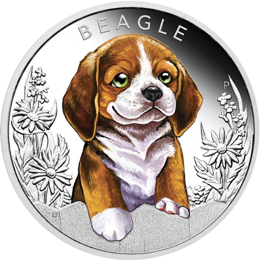 2018 Australian Puppies Series: The Beagle 1/2oz Silver Proof Coin