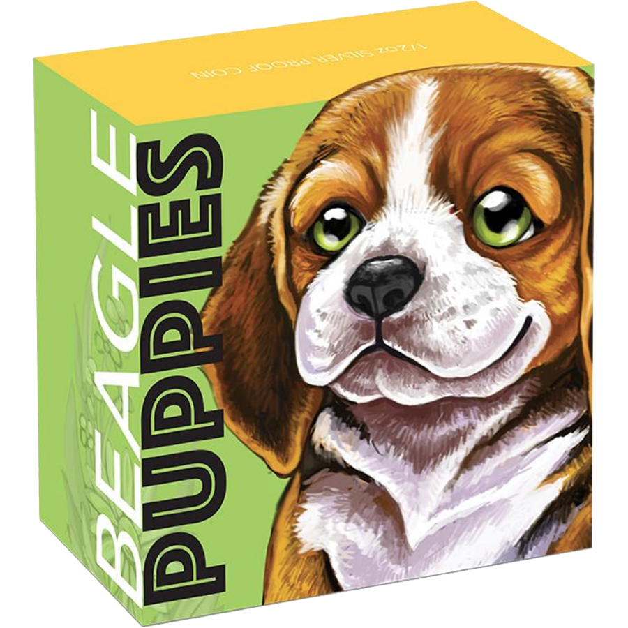 2018 Australian Puppies Series: The Beagle 1/2oz Silver Proof Coin (Image 4)