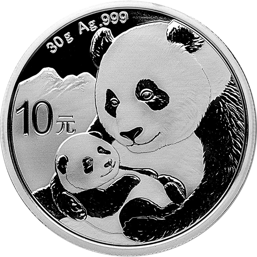 2019 Chinese Panda 30g Silver Coin