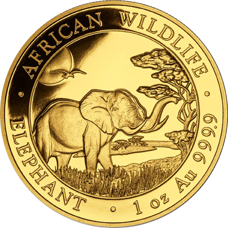 2019 Somalian Elephant 1oz Gold Coin
